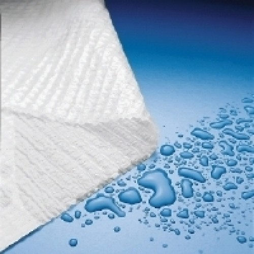 Exam Supplies Towel 2ply Polyback 13 Quot X 18 Quot Case 500